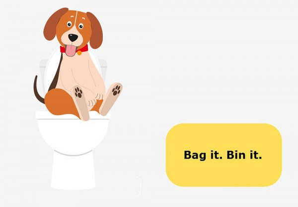 Dog poo: Bag it, bin it